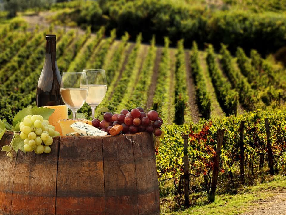 Image result for chianti wine region
