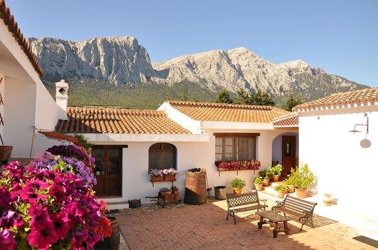 Agriturismo in Sardinia - All Luxury Apartments