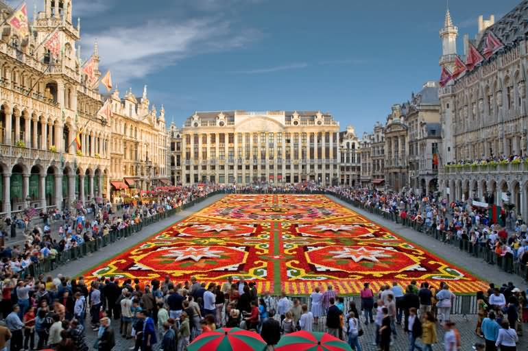 Flower Carpet at the Grand Place in Brussels - All Luxury Apartments