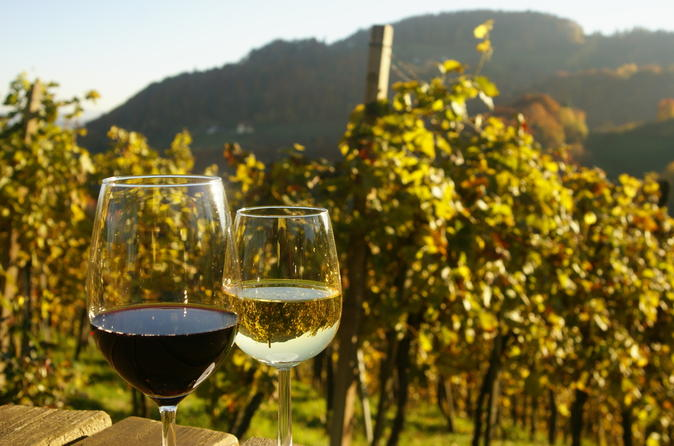 Viennese Wines - All Luxury Apartments
