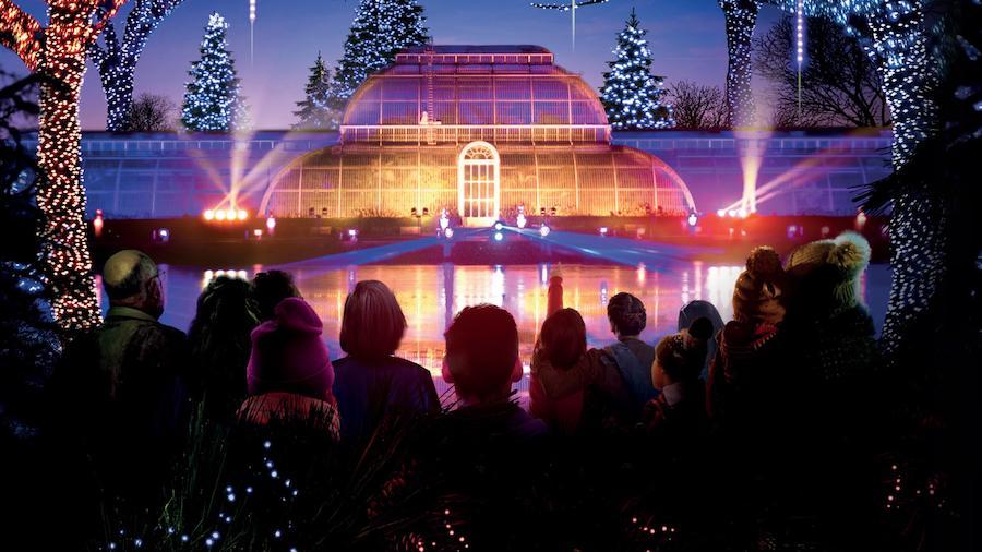 Kew - christmas lights london