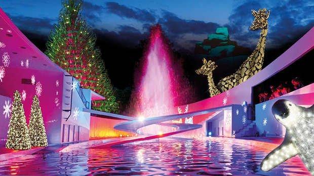 London zoo - london christmas lights