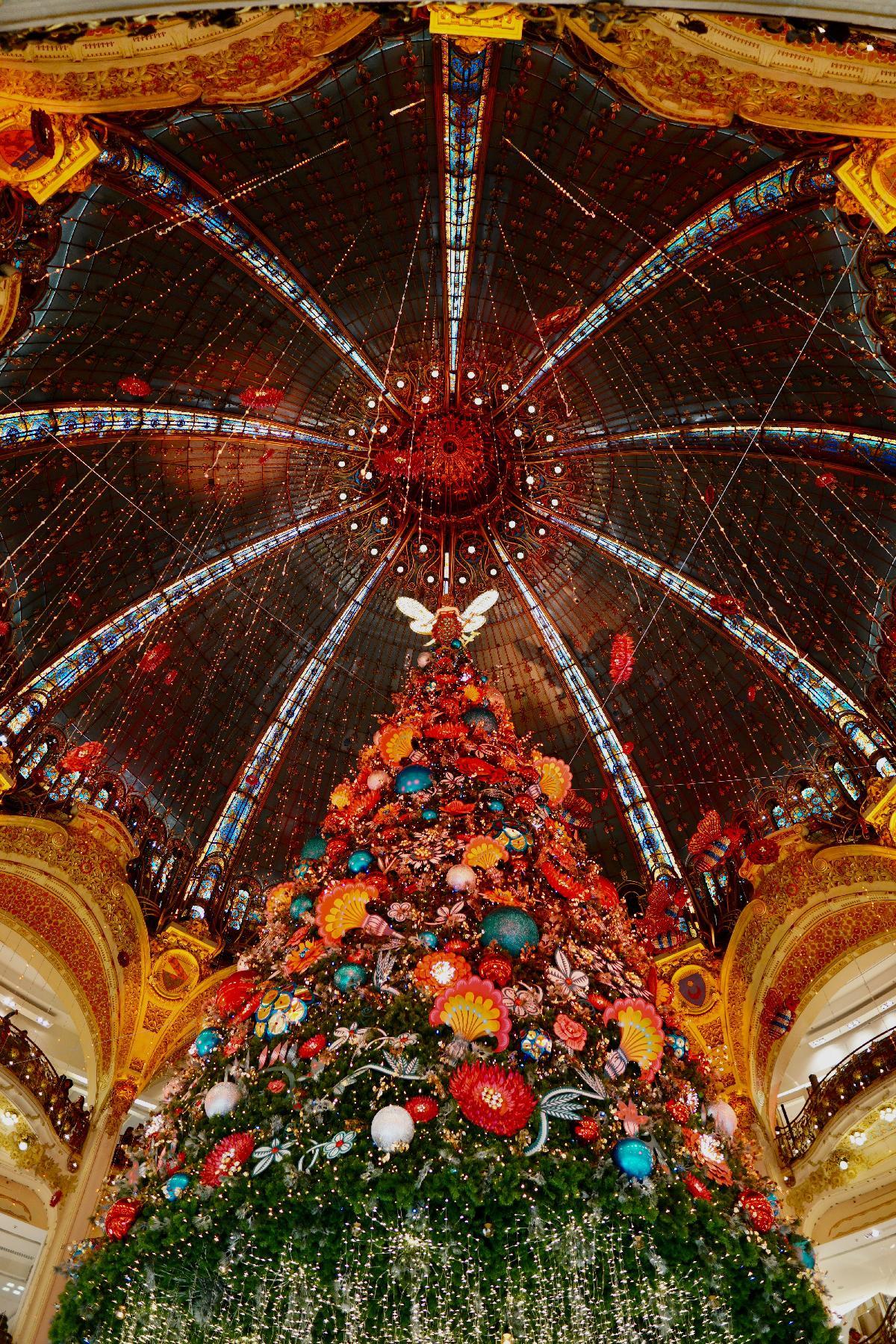 Things to do in Paris in December
