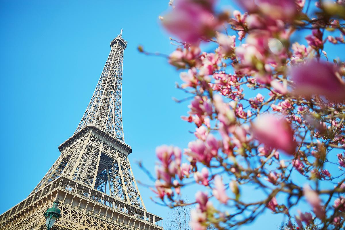 All Luxury Guide: 10 Reasons to Visit Paris This Spring