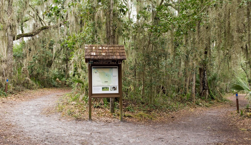 10 Nature-Bound Places in Jacksonville, Florida For Adventurers