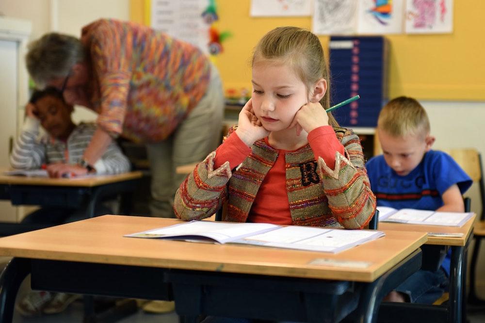 Amsterdam's Best International Schools: Where to Enroll Your Kids