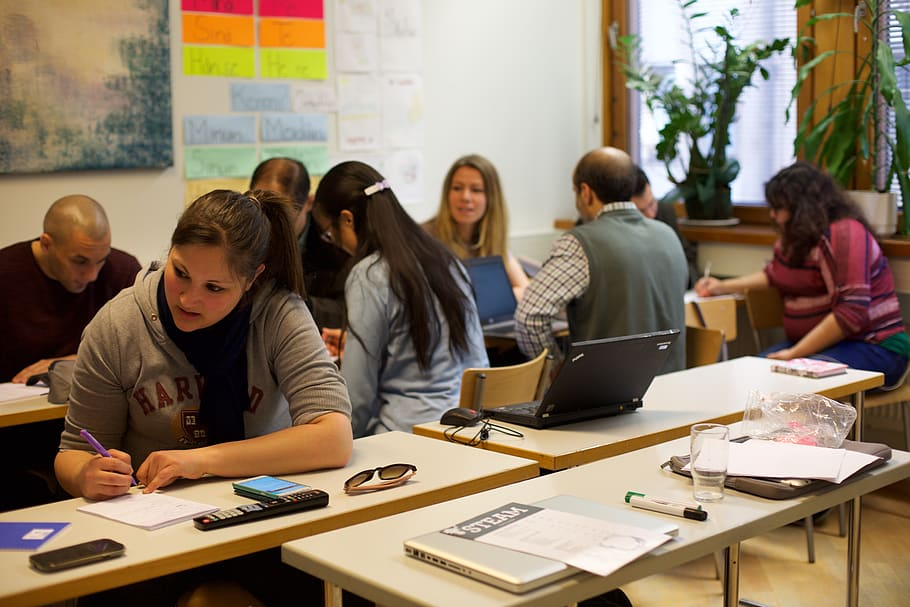 The Most Notable Dutch-Language Schools in Amsterdam