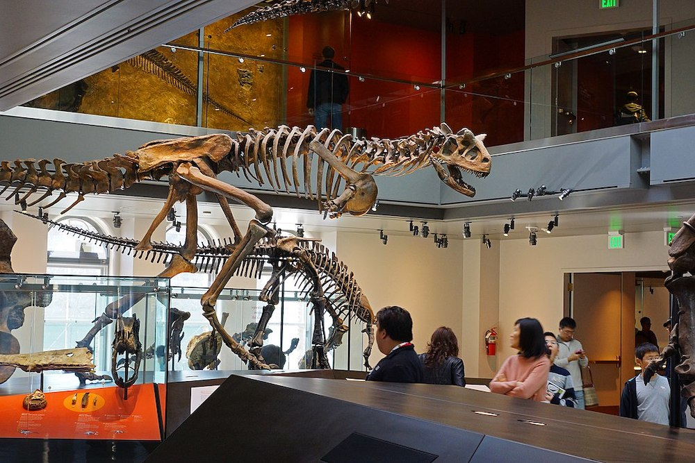 Take a Virtual Museum Tour of Los Angeles