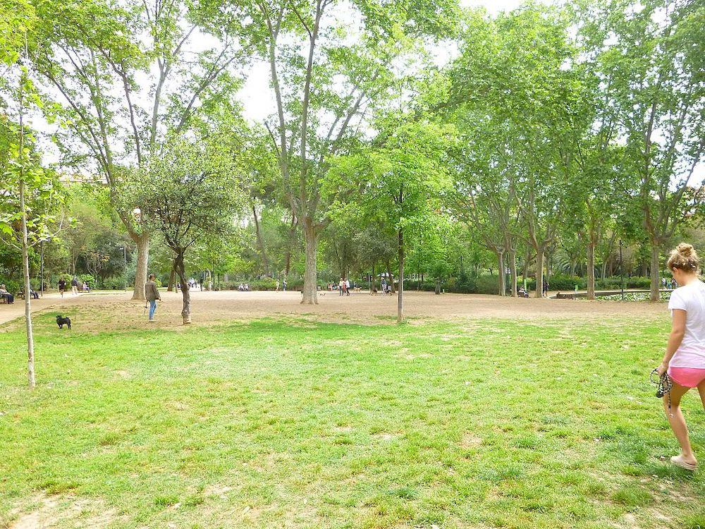 Barcelona's Best Play Areas Your Kids Can Go To
