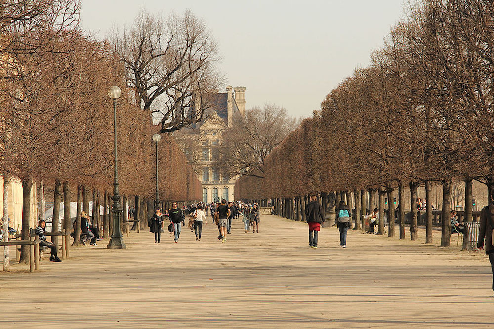 Exercising in Jardin des Tuileries: What You Can Do
