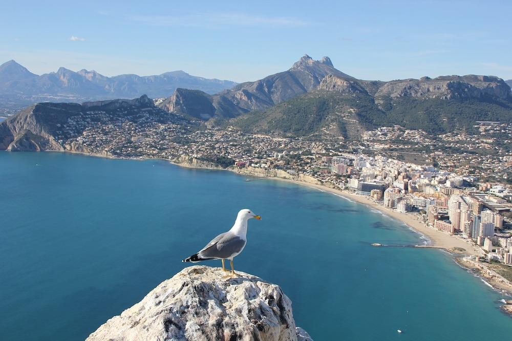 Moving To Alicante: Your Relocation Guide