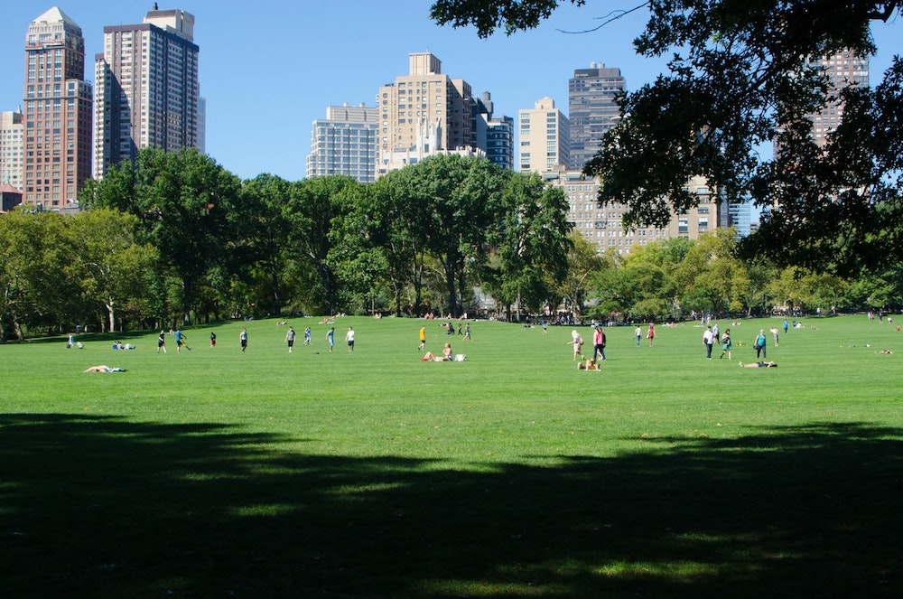 Top Tips for Visiting Central Park