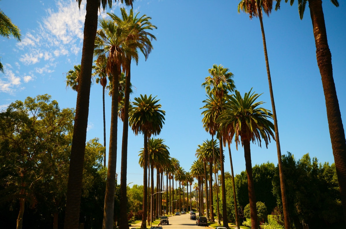 Los Angeles: City Travel Guide