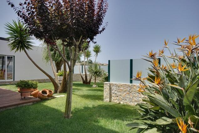 lovely and lush garden of Lisbon - Mafra Villa Strelitzia luxury apartment and vacation rental