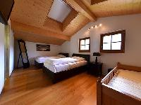 clean Chalet Mittellegi luxury apartment, holiday home, vacation rental