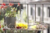 beautiful terrace of Barcelona - Platinum luxury apartment