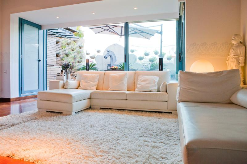 amazing Barcelona - Terrace 1 luxury apartment and vacation rental