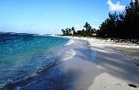 cool beachfront Bahamas - Villa Allamanda Efficiency Suite luxury apartment