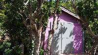 cool garden of Saint Barth Villa Ixfalia luxury holiday home, vacation rental