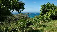 lovely garden of Saint Barth Villa The Panorama Estate luxury holiday home, vacation rental