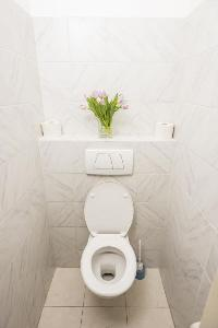spic-and-span toilet and bath in Vienna - Apartment 8 luxury vacation rental and holiday home