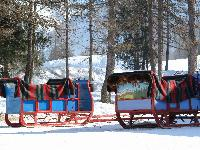 awesome things to do near French Alps - Chalet Le Passeu luxury apartment