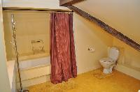 large bathroom with bathtub and toilet in a 2-bedroom Triplex Paris apartment