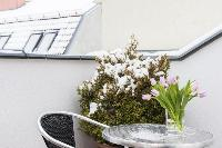 cool garden furniture at Vienna - Apartment 2 with Private Terrace luxury holiday home and vacation