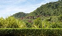 lovely and lush surroundings of Costa Rica Colina 12E luxury apartment