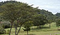 beautiful garden of Costa Rica Colina 14C luxury apartment