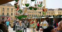 cool markets near Vienna - Studio Schoenbrunn luxury apartment