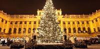 amazing landmarks near Vienna - Studio Schoenbrunn luxury apartment