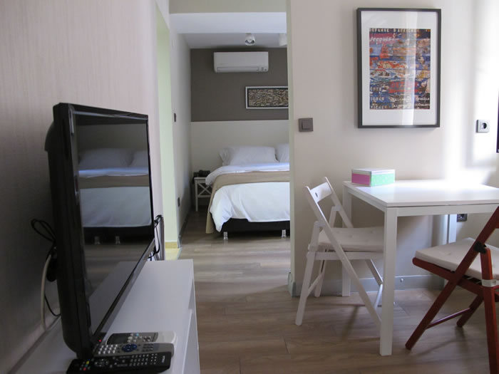 Istanbul - New 1 Bedroom Flat with yard in Taksim