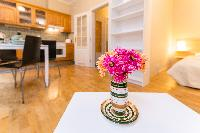 spacious Prague - Picasso Apartment 1 luxury holiday home and vacation rental