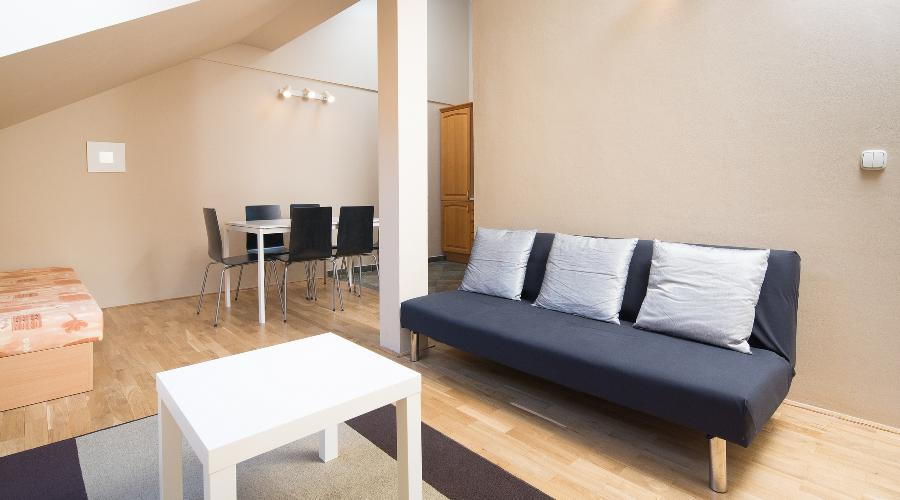 pleasant Prague - Picasso Luxury Apartment 4 holiday home and vacation rental