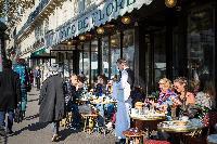 Café de Flore nearby Café from Paris luxury apartment