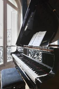 beautiful grand piano in Paris - Rue Scheffer luxury apartment