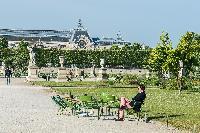 Tuileries Garden near a Paris luxury apartment
