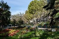 nearby park from a Paris luxury apartment
