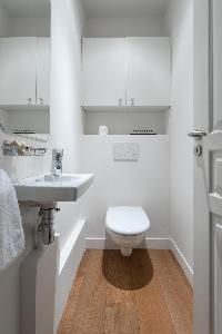 fresh and clean bathroom in Paris - Rue Jean-Pierre Timbaud luxury apartment