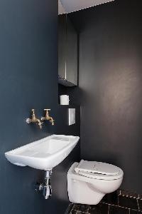 sleek toilet in dark grey and deep blue hues in Paris luxury apartment