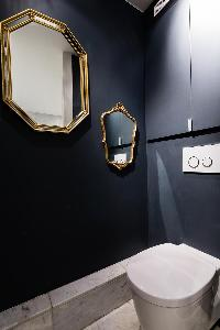 toilet in elephant grey hue with stylish mirrors in a Paris luxury apartment