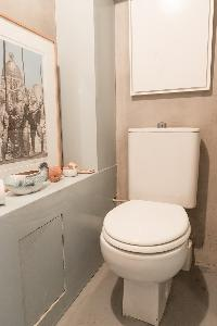 fresh and neat toilet and bath in Paris - Rue Jules César Loft luxury apartment