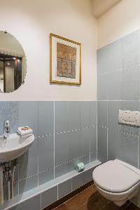 blue-gray tiled toilet in Paris luxury apartment