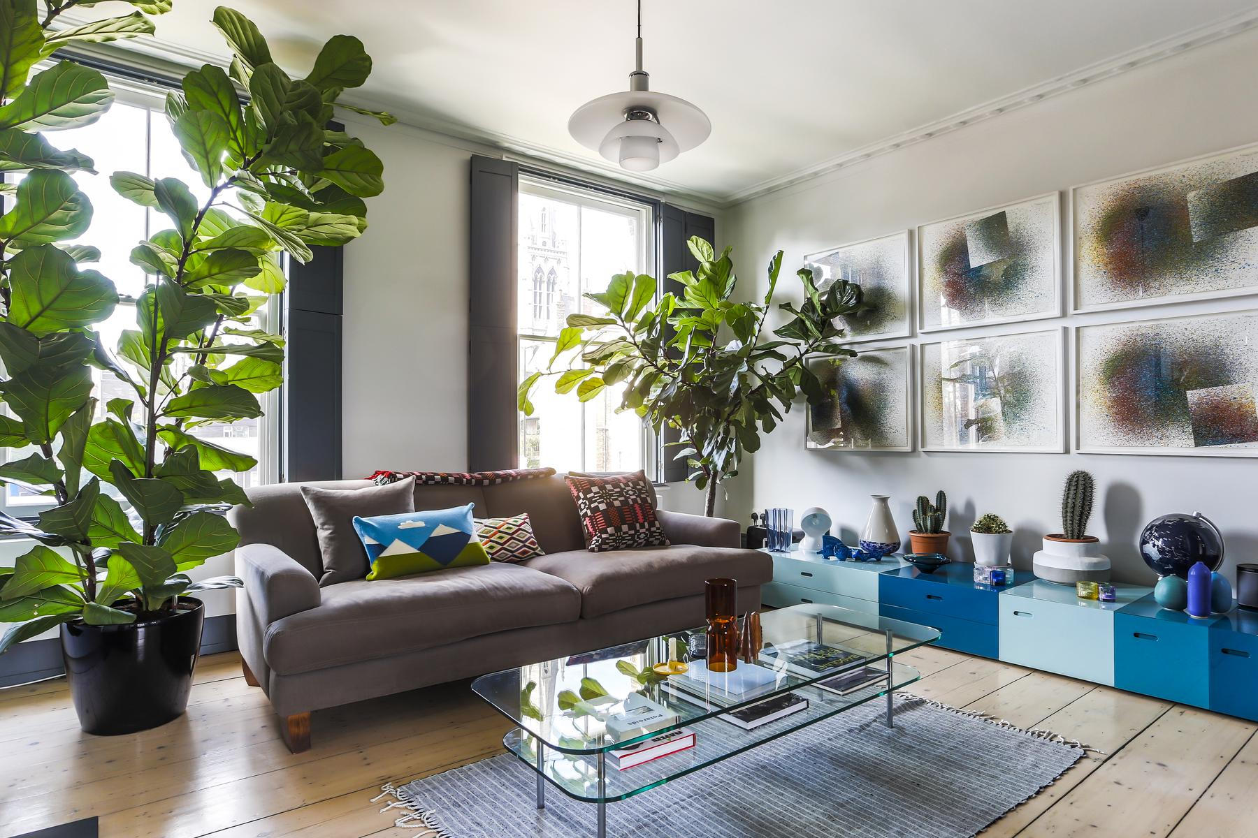indoor plants dot the sitting room of London Albion Road luxury apartment