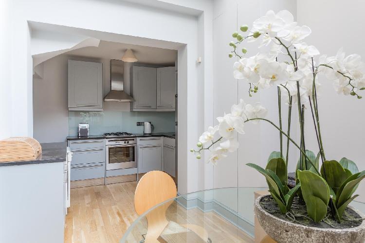 lovely London Lamont Road IV luxury apartment