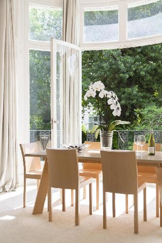 chic London Belsize Park IV luxury apartment and vacation rental