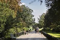 green surroundings of luxury apartment in Abbey Gardens St John's Wood London