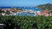 lush surroundings of Saint Barth Villa Serenity luxury holiday home, vacation rental