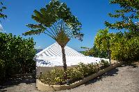 lush garden of Saint Barth Villa Tortue luxury holiday home, vacation rental